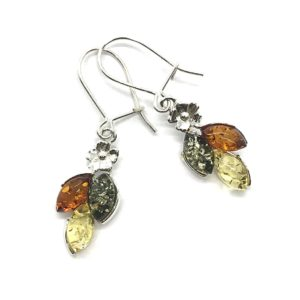 Baltic Amber Multi color Earrings